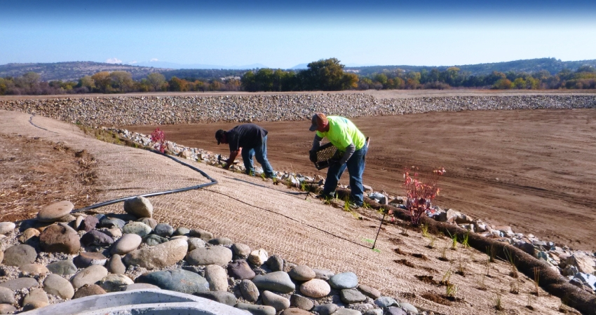McEntire Landscaping Erosion Control
